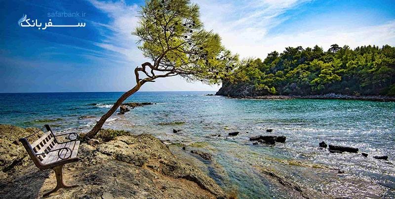 ساحل فاسلیس