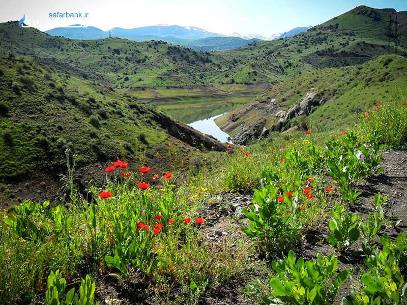 کوه های آراگاتس