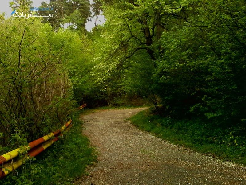 پارک ملی دلیجان