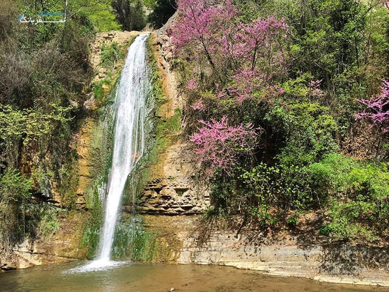 آبشار باغ گیاه شناسی گرجستان
