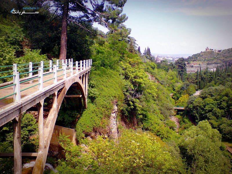 باغ گیاه شناسی ملی تفلیس گرجستان