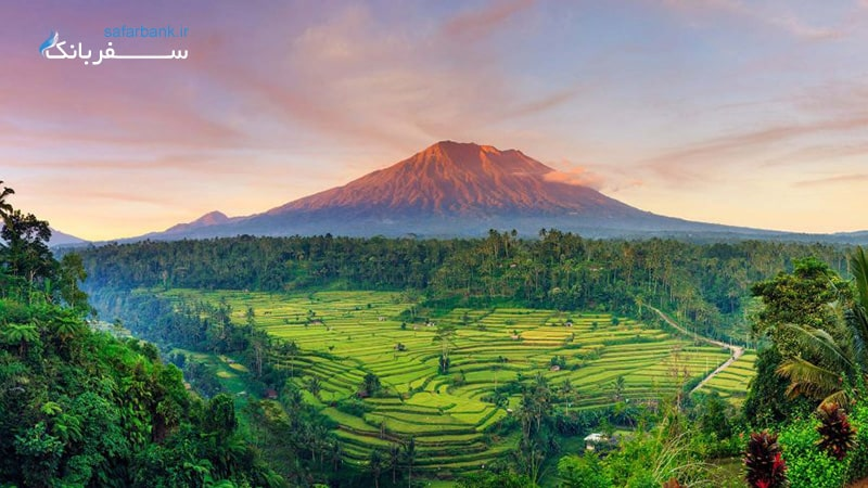 طبیعت جزیره بالی