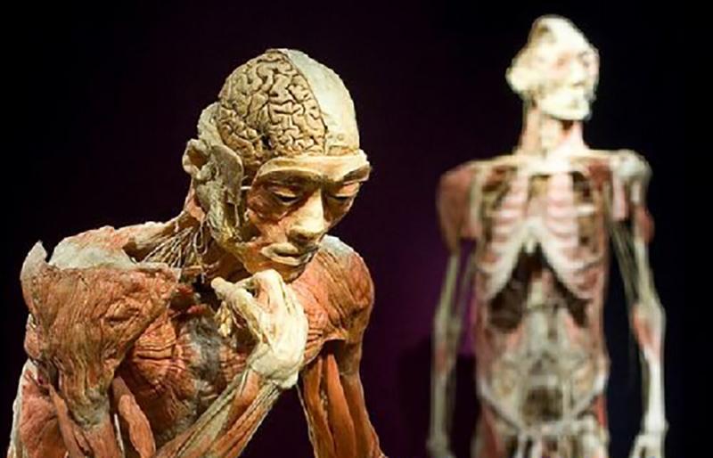 موزه ی مرگ بانکوک