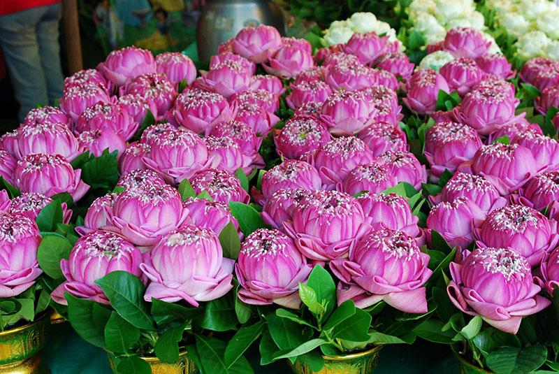 بازار گل بانکوک از بزرگترین بازارهای گل در جهان