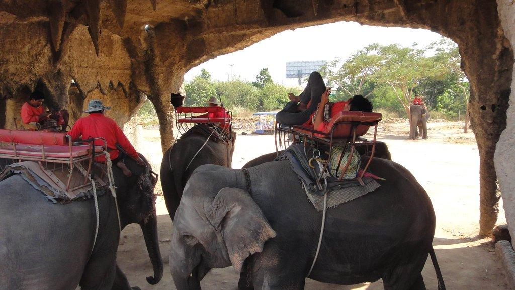 دهکدۀ فیلهای پاتایا