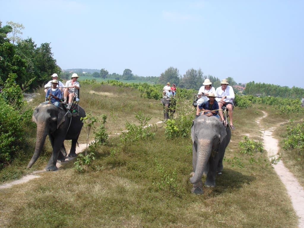دهکده فیل ها در تور گردشگری تایلند