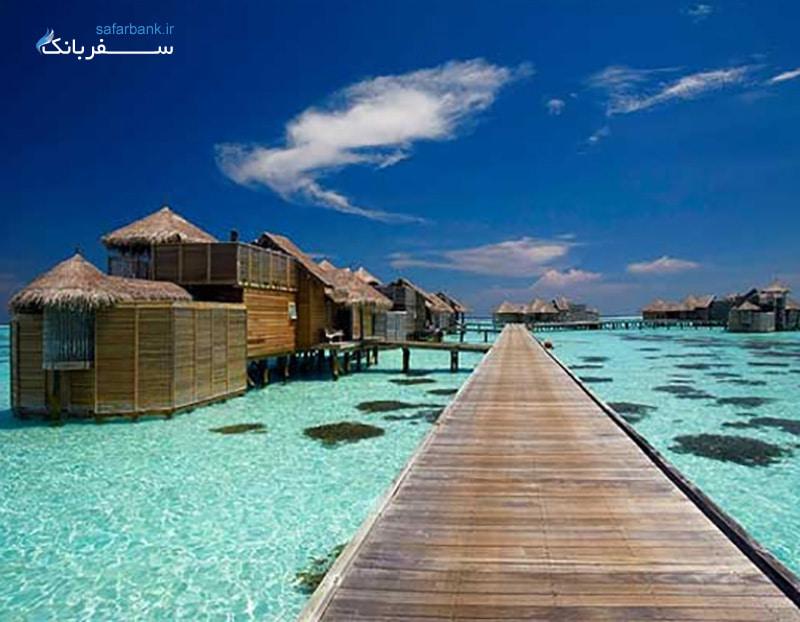 جزیره مرجانهای پاتایا تایلند