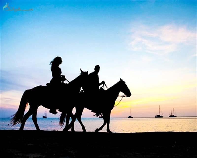 اسب سواری در پوکت