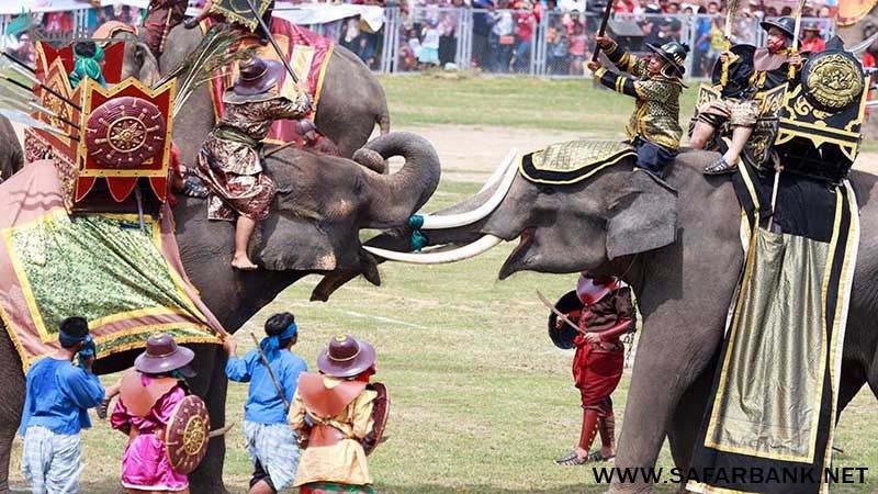 فیل سواری پوکت