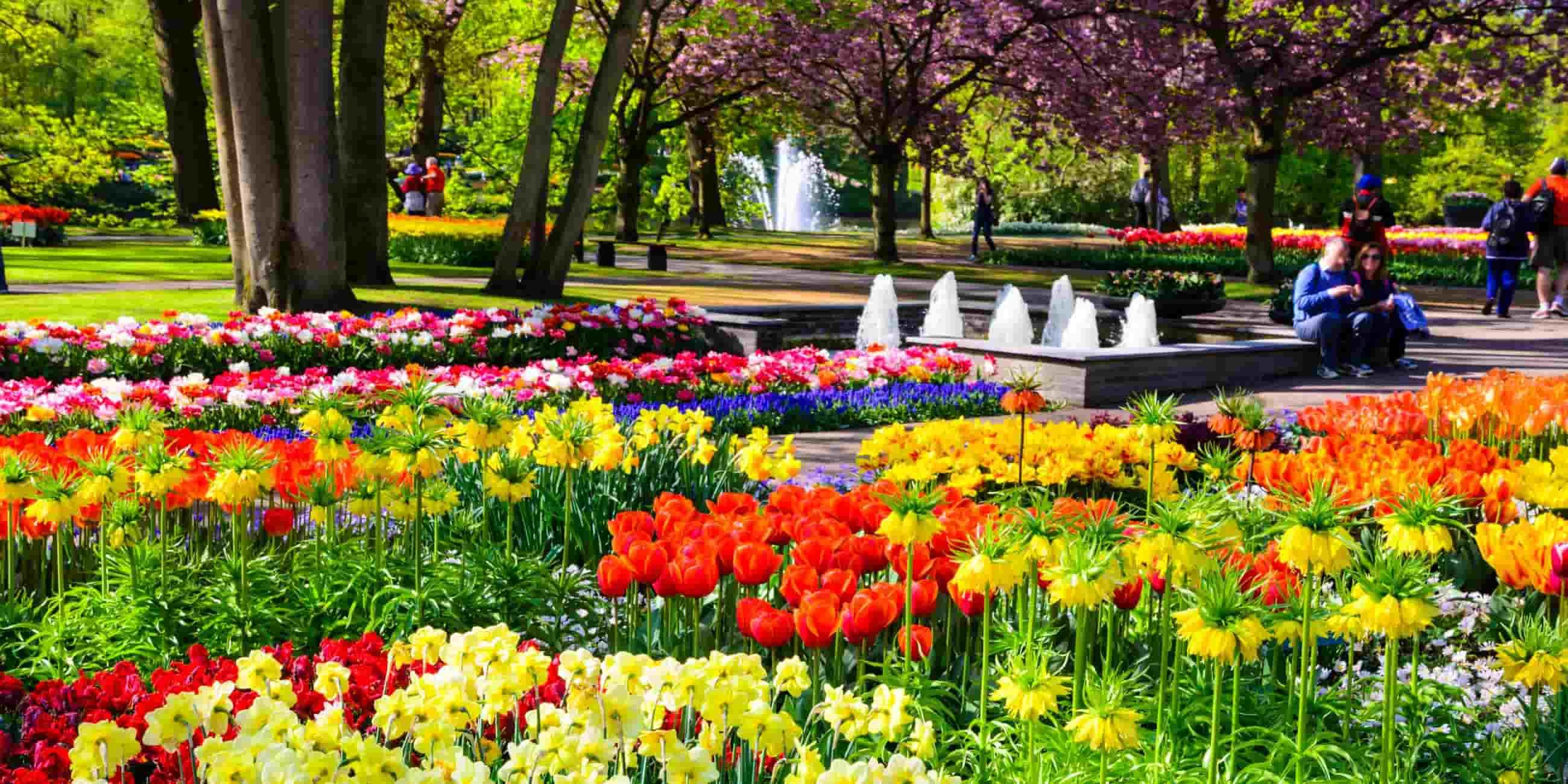 باغ لاله هلند