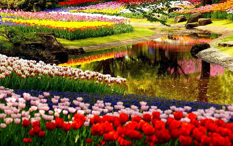 باغ گل کوکنهوف کجاست