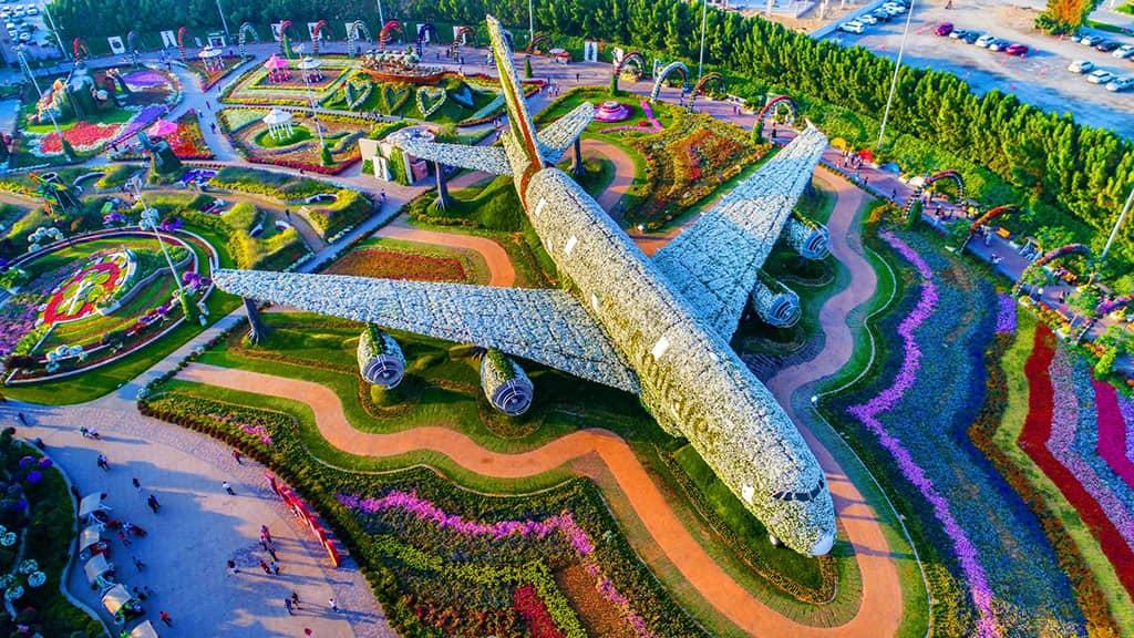 دبی میراکل گاردن، باغ معجزه در دل کویر
