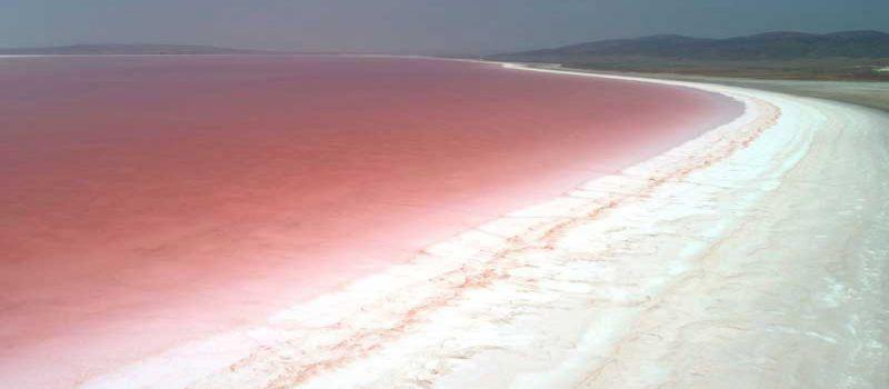 دریاچه نمک قونیه دریاچه ای صورتی