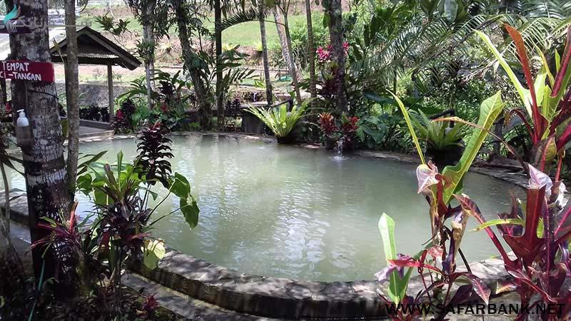 چشمه های آب گرم بالی